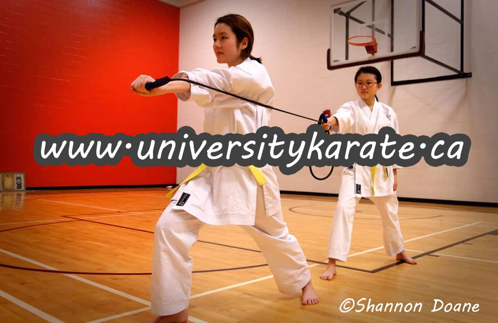 Shotokan Karate Students working together